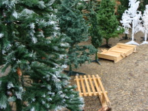 sapins, sports d'hiver